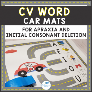 CV Word Car Mats Cover Update 3