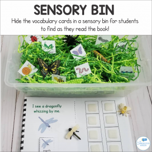 Bugs Insects Interactive Book and Sensory Bin Idea