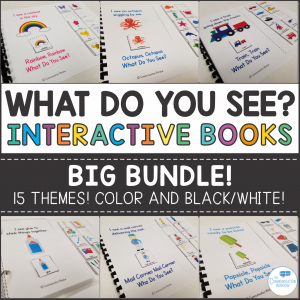 Interactive Vocabulary Books for Speech and Special Education